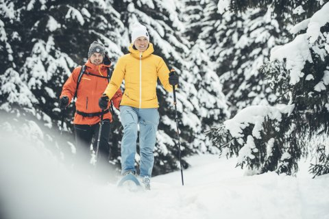 Snowshoeing in the Stubai valley
